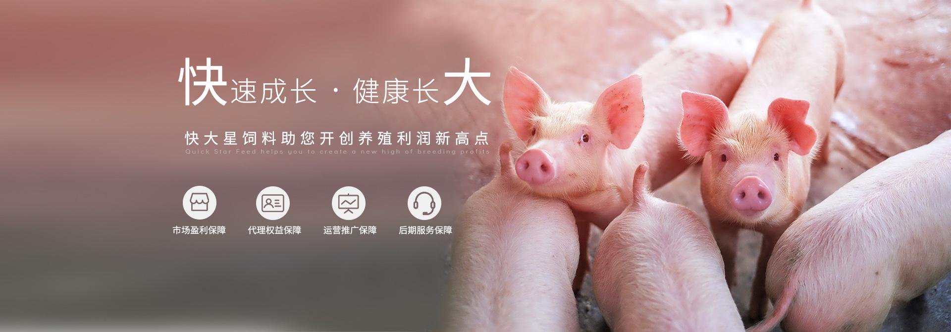 快大-促进健康养殖,服务绿色农业